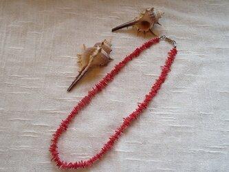 紅珊瑚のネックレス(送料無料)の画像