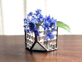 *再販*テラリウム・Cube(S・チェッカー)の画像