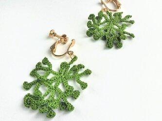 海揚りのイヤリング -coral- [forest green]の画像