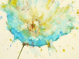 Flower 22 (額縁付き)の画像