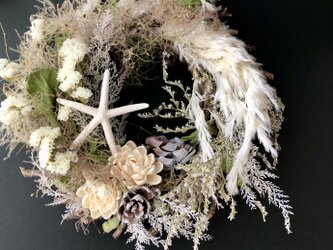 Botanical wreath IIVの画像