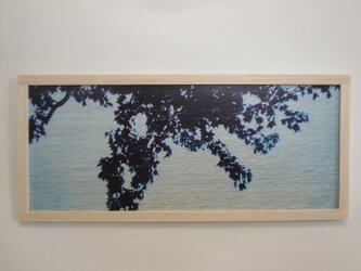 blue shadowの画像