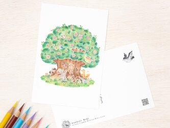 """4枚セット。絵本のような。ポストカード """"動物たちの大きな木の家"""" PC-503の画像"""