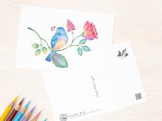 """4枚セット。絵本のような。ポストカード """"青い小鳥と草花"""" PC-512の画像"""