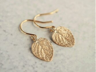 Marjoram earrings {EP061K10}の画像