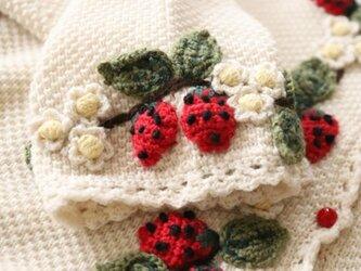【限定】お苺の刺繍たっぷり ウール・ セーター ニットLH009201の画像