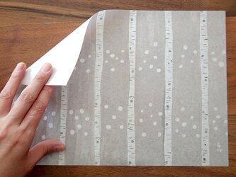 A4サイズ 包装紙/ラッピングペーパー 『白樺』30枚入りの画像