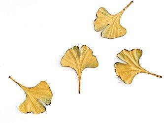 """brooch :  ブローチ """" いちょうの葉 """"の画像"""