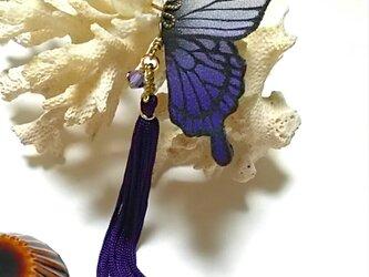 蝶のピアス(小)アゲハの画像