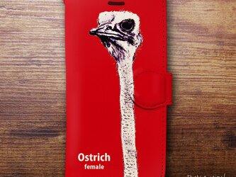 Original手帳型iPhoneケース「ダチョウ_Ostrich」の画像