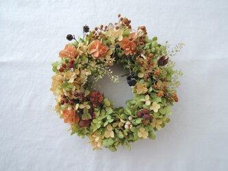 アナベルの秋色リースの画像