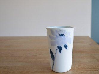 マツムシ草のロンググラス Mの画像