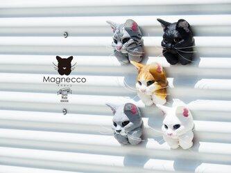 持てちゃうマグネット【Magnecco マグネッコ】【クロネコ】ポストカード付き 送料無料の画像