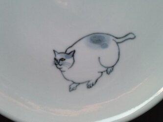 染付5寸猫皿1の画像