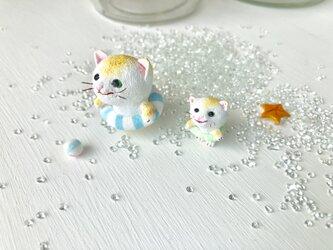 海に着いた猫さんたちの画像