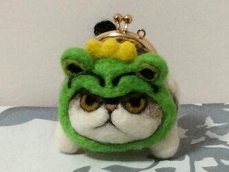 gamaneko チャペ  カエルの王様の画像