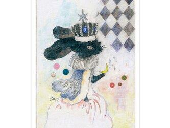 選べるポストカード/2枚セット『No.236 星冠の黒うさぎ』の画像