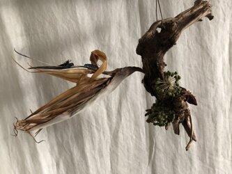 wacrava - objet 【humming】の画像