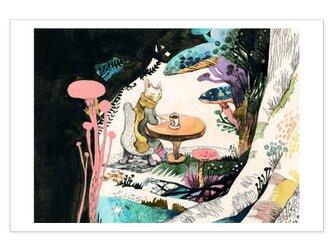 選べるポストカード/2枚セット『No.242 星祭りの夜に』の画像