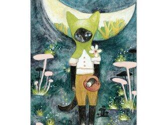 選べるポストカード/2枚セット『No.215 三日月森萌緑のフードの猫』の画像