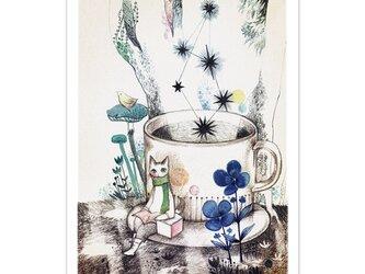 選べるポストカード/2枚セット『No.262 木漏れ陽 檸檬鳥と旅猫』の画像