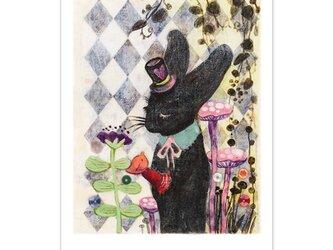 選べるポストカード/2枚セット『No.273 三月兎のお茶会-帽子屋黒うさぎ』の画像