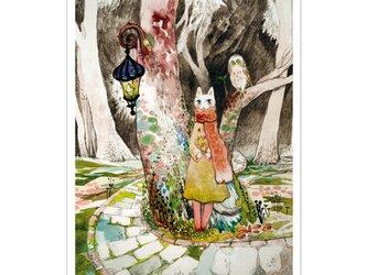 選べるポストカード/2枚セット『No.269 旅猫と星とふくろう森』の画像