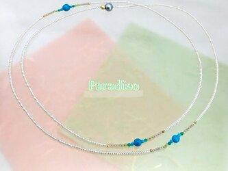 Paradiso(パラディソ)の画像