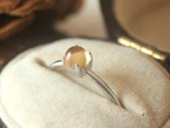 大粒*宝石質天然石シトリン シルバーリング の画像
