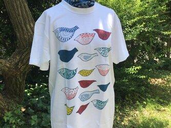 Tシャツ「カラフルバード」の画像