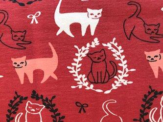 アメリカBirch プリントニットカットクロス Pirouette 猫 レッド オーガニックコットンの画像