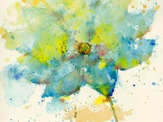 Flower 24 (額縁付き)の画像