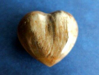 ペトリファイドウッド(珪化木)ハート-cの画像