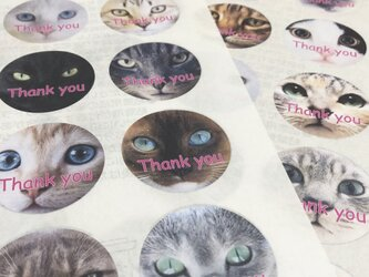 サンキューシール 猫フェイス(大)『Thank you』の画像