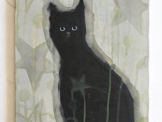 星の中の黒猫  F6サイズ絵画 キャンバス絵画 原画 インテリアの画像