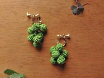 山野草のイヤリング -ampelopsis- [forest green]の画像