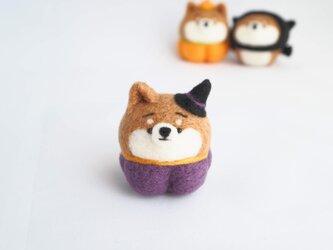 【受注製作】~ハロウィンコスプレ~とんがり魔女帽子のまゆ柴犬(赤柴・黒柴・白柴) 羊毛フェルトの画像