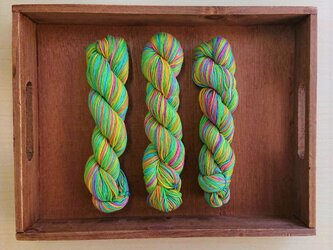インダスからの贈り物(オリジナルの段染め糸)④3本セットの画像