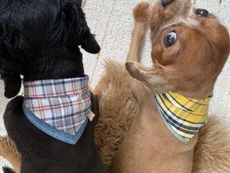 犬用バンダナ5-2.Sの画像
