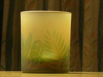 トロピカルグリーン フリーグラス A(1個)の画像