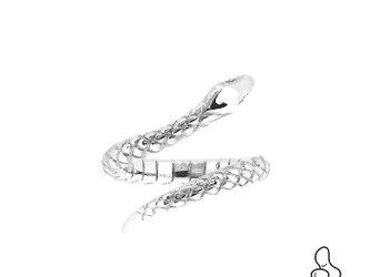 銀のヘビの画像