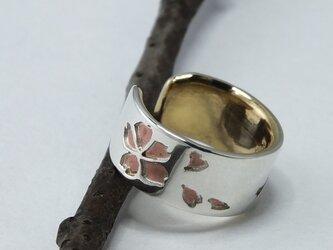 C-SakuraBsW6  銀と真鍮桜のイヤーカフ 幅6mm <鏡面/ツヤ消し 選択可>の画像