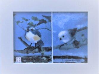 癒しの小鳥たち ≪卓上&壁掛け≫の画像
