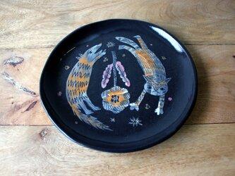 猫と犬の丸皿の画像