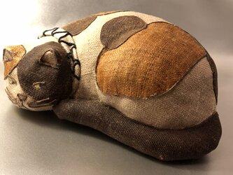 眠い三毛猫の画像