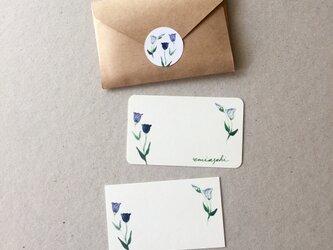 トルコキキョウのメッセージカード 20枚の画像