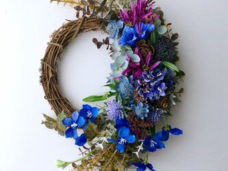 Delphinium autumn wreathの画像