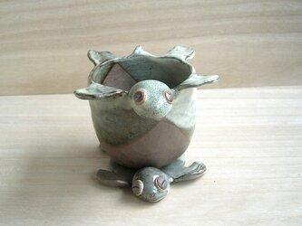 カメの植木鉢 こげ茶の画像