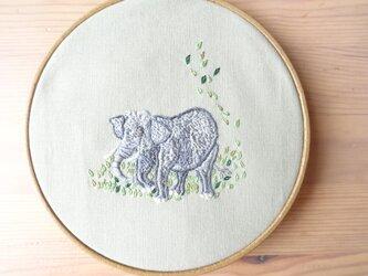 アジアゾウの画像