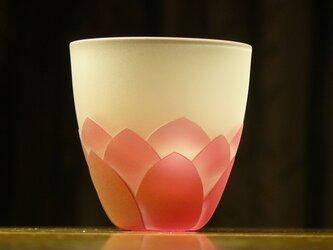 蓮の花のぐいのみ B(1個)の画像
